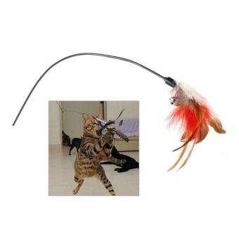 Feather Flier Cat Toy with Natural Feathers - intl - 8602411 , OE680OTAA87HCZVNAMZ-15775339 , 224_OE680OTAA87HCZVNAMZ-15775339 , 652680 , Feather-Flier-Cat-Toy-with-Natural-Feathers-intl-224_OE680OTAA87HCZVNAMZ-15775339 , lazada.vn , Feather Flier Cat Toy with Natural Feathers - intl