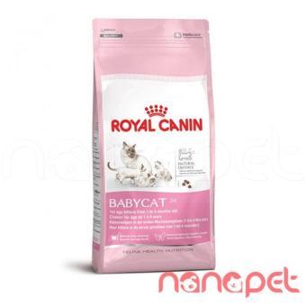 Hạt Royal Canin Babycat thức ăn cho mèo mẹ và mèo con 43 2kg - 8564011 , OE680OTAA30JALVNAMZ-5237908 , 224_OE680OTAA30JALVNAMZ-5237908 , 385000 , Hat-Royal-Canin-Babycat-thuc-an-cho-meo-me-va-meo-con-43-2kg-224_OE680OTAA30JALVNAMZ-5237908 , lazada.vn , Hạt Royal Canin Babycat thức ăn cho mèo mẹ và mèo con 43 2kg