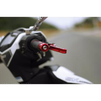 Bộ 2 bao tay lái xe máy BRCD-070 (bạc)