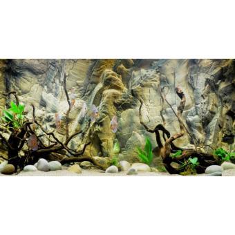 Tranh phông nền 3D dán hồ cá Aqua_016