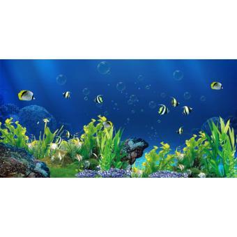 Tranh phông nền 3D dán hồ cá Aqua_008