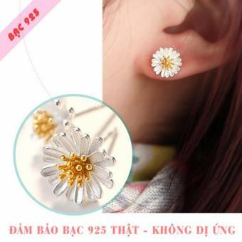 Bông tai bạc 925 hoa cúc xinh xắn dễ thương SE-D100093