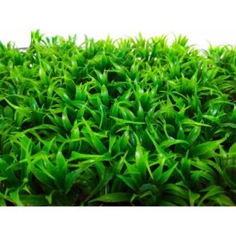 Bộ trang trí 10 tấm thảm cỏ lá cong