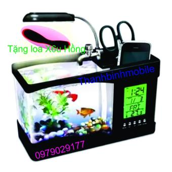 Mua Bể cá mini phong thủy cho bàn làm việc (đen) + Loa X6u (hồng) giá tốt nhất