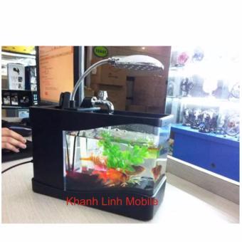 Bể cá mini phong thủy cho bàn làm việc (đen)