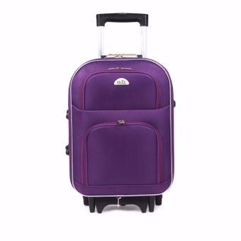 Vali du lịch Bi&Ti kéo tay 304 (Tím) 20 inch