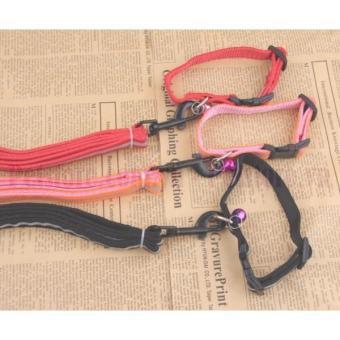 Bộ dây vòng cổ phản quang 2 lớp 1.5