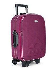 Vali du lịch kéo tay 20inch BI&TI (tím)+ Tặng ví passporrt và gối hơi du lịch