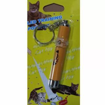 Đồ chơi đèn led hoạt hình cho thú cưng pets (Hình Cá)