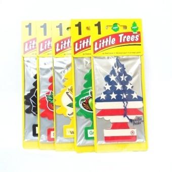Bộ 5 cây thông thơm Mỹ