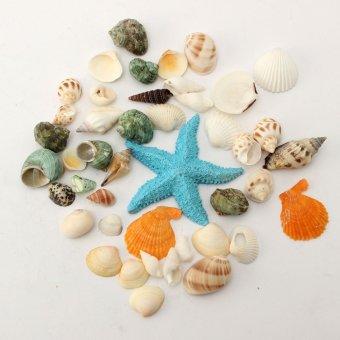 Beach Mixed SeaShells Fish Tank Mix Sea Natural Shell Craft Aquarium Decoration - intl