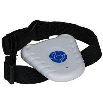 Ultrasonic Anti Bark No Barking Pet Big Small Dog Training Control Collar- - intl