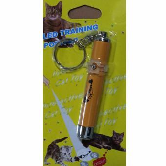 Đồ chơi đèn led hoạt hình cho thú cưng pets (Cá)