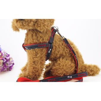 Vòng cổ và dây dắt cún Puppy