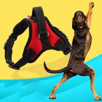 Thắt lưng dắt chó cảnh sát - thay thế vòng vổ new 2017