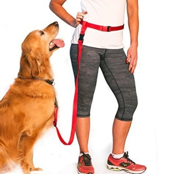 New Nylon Rope Hands-Free Adjustable Walking Jogging OrRunningPetDog Leash - intl - 8596755 , OE680OTAA7UU1RVNAMZ-14898466 , 224_OE680OTAA7UU1RVNAMZ-14898466 , 573300 , New-Nylon-Rope-Hands-Free-Adjustable-Walking-Jogging-OrRunningPetDog-Leash-intl-224_OE680OTAA7UU1RVNAMZ-14898466 , lazada.vn , New Nylon Rope Hands-Free Adjustable W