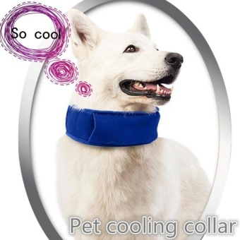 SHINE Pet Heatstroke Cooler Collar Dog Collar PetCollarCoolingArtifact (blue) - intl - 8588261 , OE680OTAA704KYVNAMZ-12851760 , 224_OE680OTAA704KYVNAMZ-12851760 , 573300 , SHINE-Pet-Heatstroke-Cooler-Collar-Dog-Collar-PetCollarCoolingArtifact-blue-intl-224_OE680OTAA704KYVNAMZ-12851760 , lazada.vn , SHINE Pet Heatstroke Cooler Collar Do