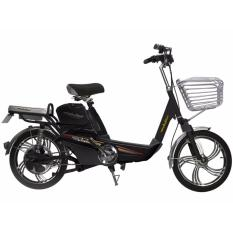 Xe đạp điện Anbico AP1503