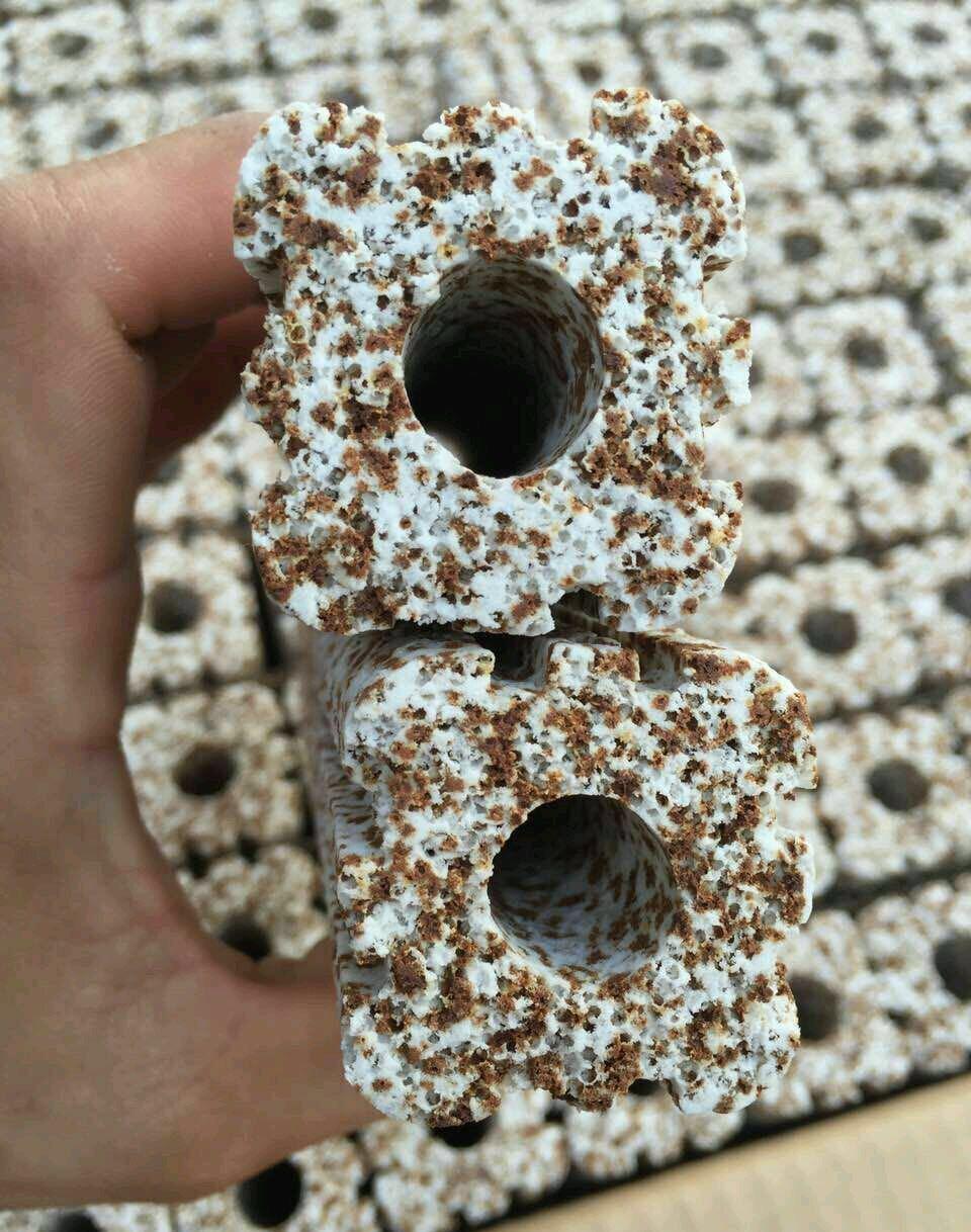 Bộ 5 Sứ thanh hoa mai muối tiêu DÀI 15CM (loại lớn nhất) dùng làm vật liệu lọc cho lọc ngoài, lọc tràn trong hồ thủy sinh, hồ cá cảnh