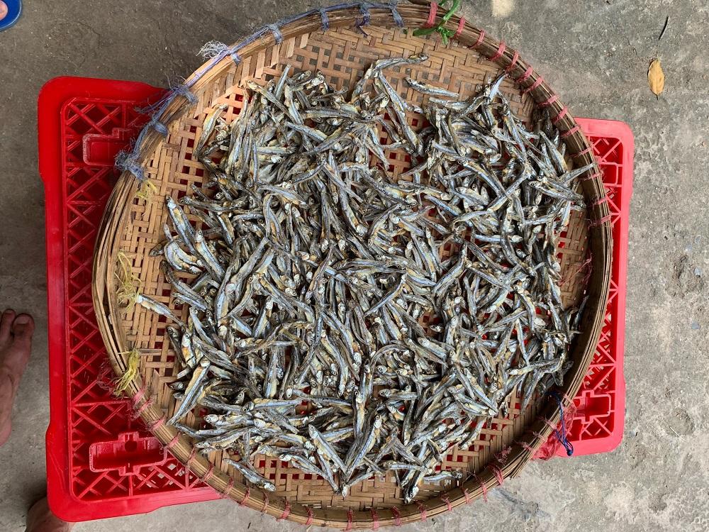 Cá cơm kho tiêu ngon, Kho cá mặn ngọt, Kho cá cơm tươi, 500G khô cá cơm sọc trắng hảo hạng, cá cơm khô, đặc sản Phú Quốc