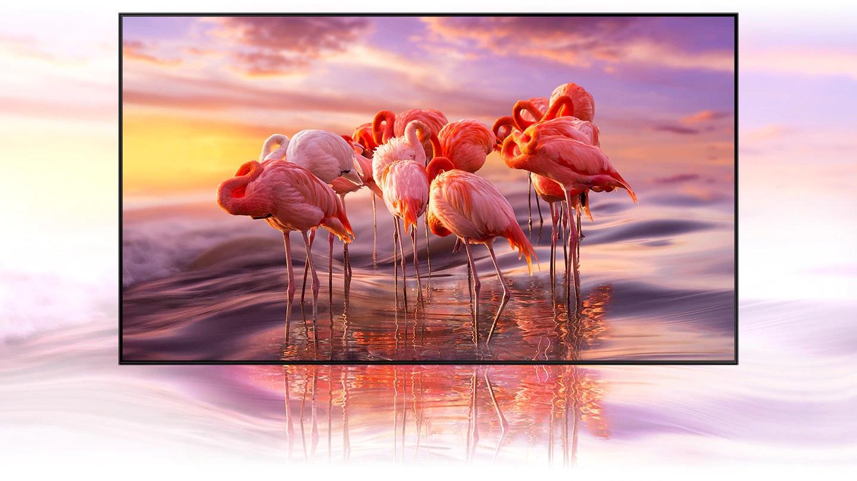 Smart Tivi Samsung 4K QLED 55 inch 55Q65TA (Ảnh 1)