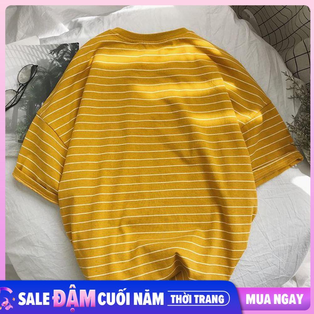 Áo thun nữ tay lỡ form rộng giấu quần sọc ngang nhỏ Freesize 50-75kg TL147