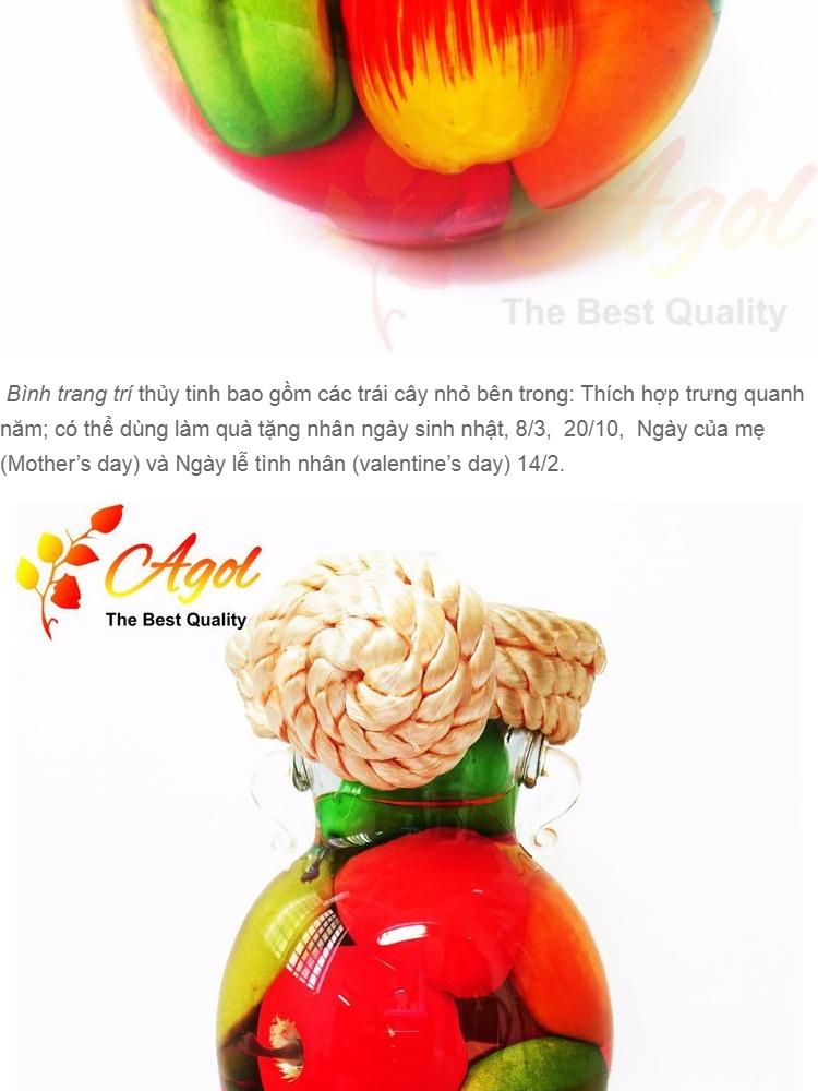bình TRANG TRÍ trái cây cao tặng bình trang trí trái cây trung - 4