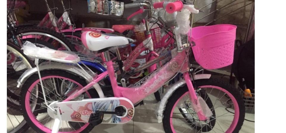 xe đạp trẻ em - xe đạp cho bé gái - dành cho bé 2-6 tuổi - mẫu mới khung vành bằng sắt siêu trắc chắn bánh 12 3